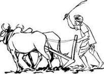प्रथम विश्व किसान सम्मेलन काठमाडौंमा